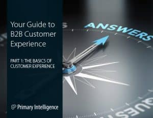 eBook: Guide to B2B Customer Experience 1